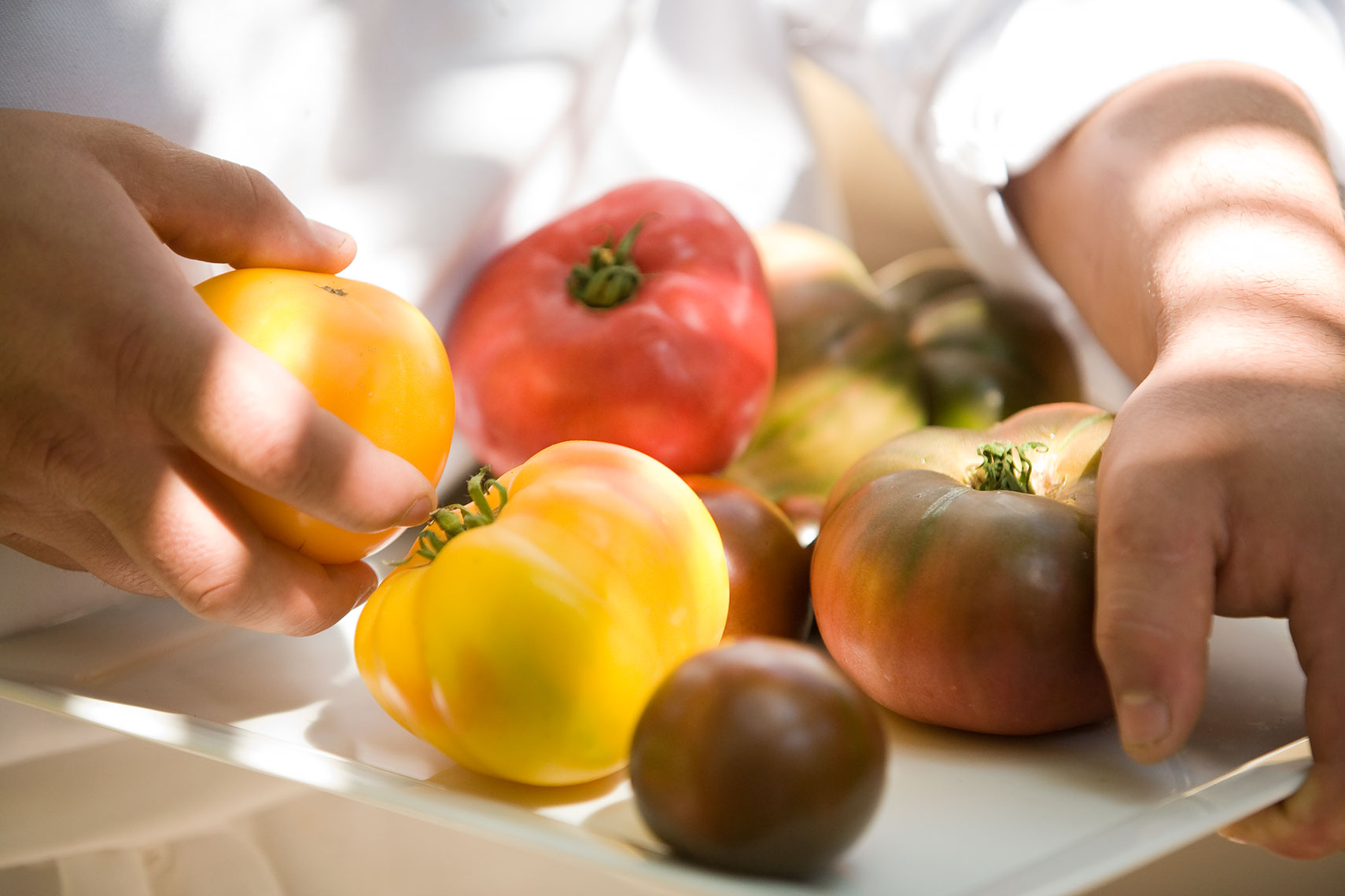 Heirloom_tomatoes_Pelican_Hill